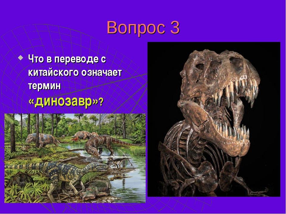Вопрос 3 Что в переводе с китайского означает термин «динозавр»? «Ужасный дра...