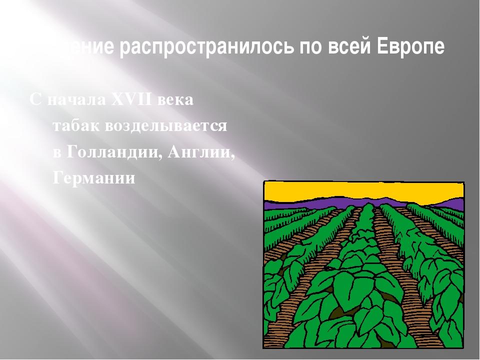 В России табак получил широкое распространение благодаря Петру I Пример царя...
