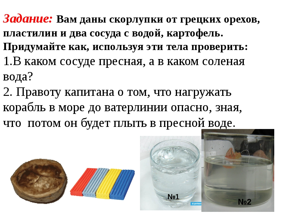 Задание: Вам даны скорлупки от грецких орехов, пластилин и два сосуда с водой...
