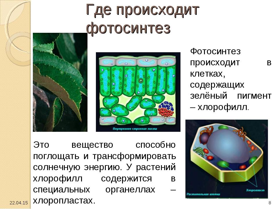 Где происходит фотосинтез Это вещество способно поглощать и трансформировать...