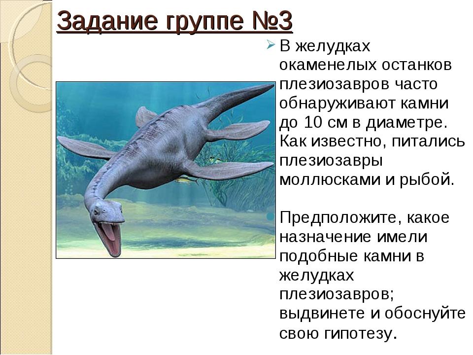 Задание группе №3 В желудках окаменелых останков плезиозавров часто обнаружив...