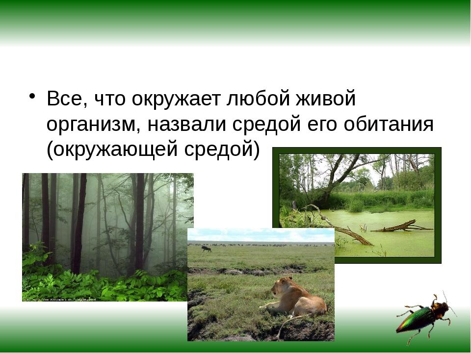 Все, что окружает любой живой организм, назвали средой его обитания (окружаю...