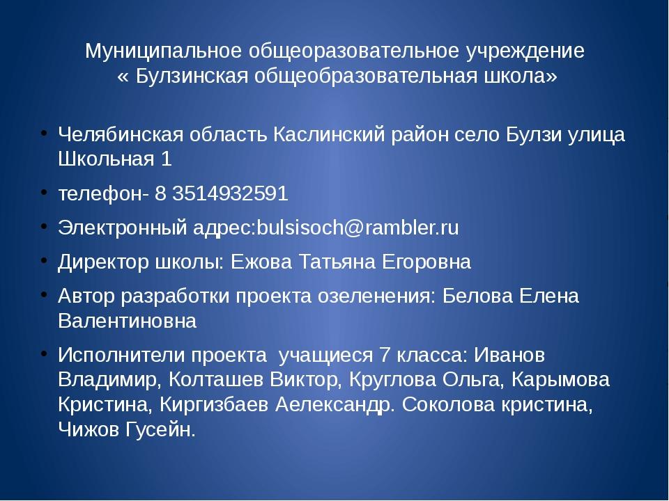 Муниципальное общеоразовательное учреждение « Булзинская общеобразовательная...