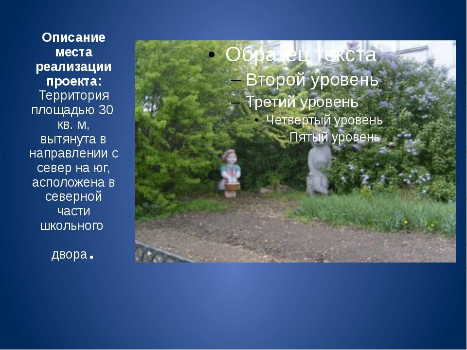 Описание места реализации проекта: Территория площадью 30 кв. м, вытянута в н...