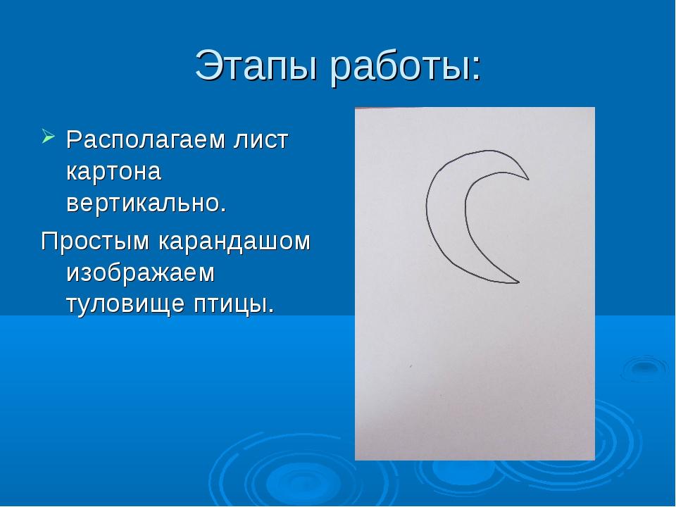 Этапы работы: Располагаем лист картона вертикально. Простым карандашом изобра...