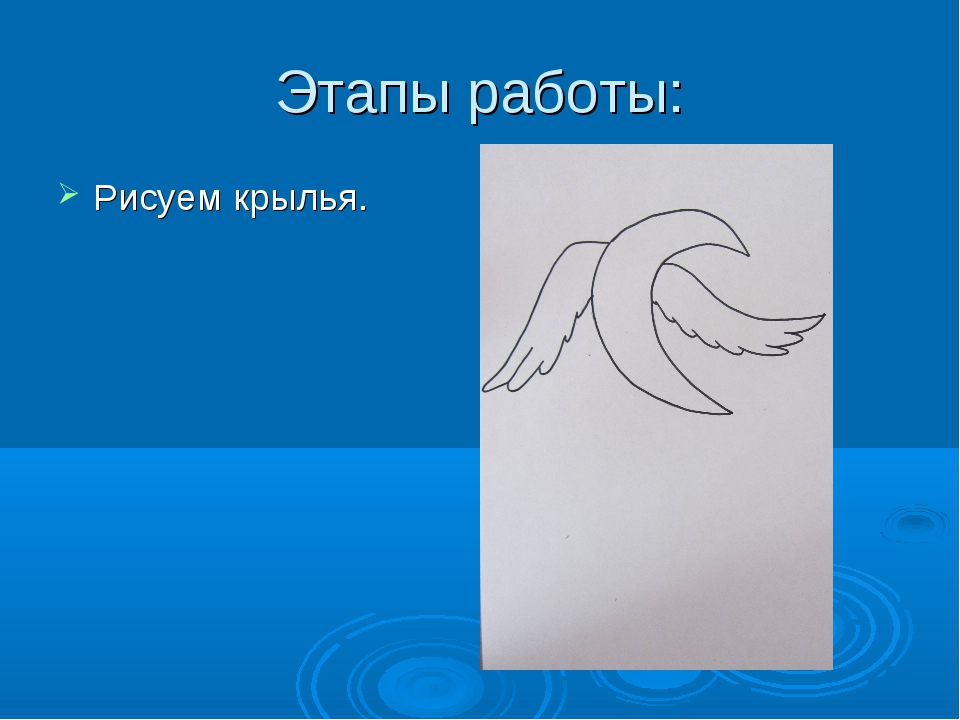 Этапы работы: Рисуем крылья.