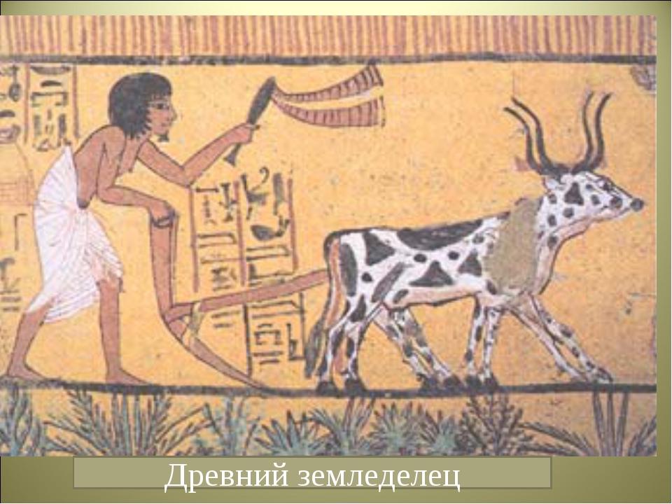 Древний земледелец