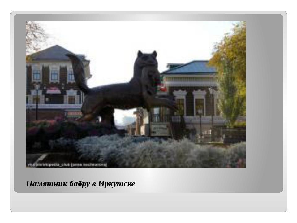 Памятник бабру в Иркутске щелкните, чтобы…