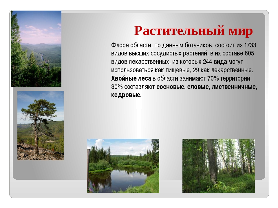 Растительный мир Флора области, по данным ботаников, состоит из 1733 видов вы...