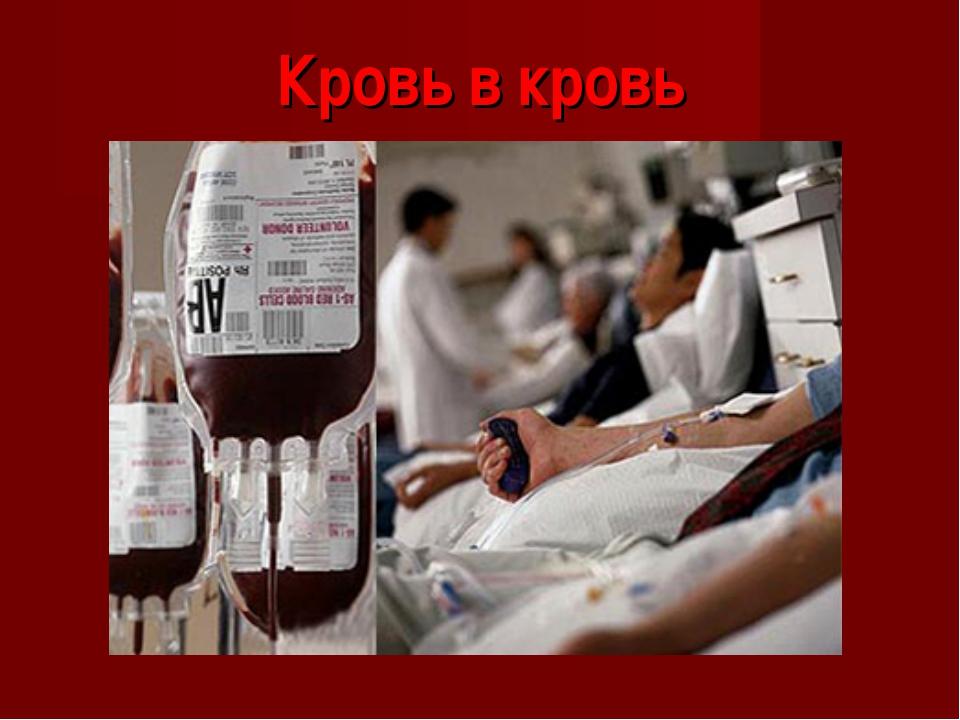 Кровь в кровь