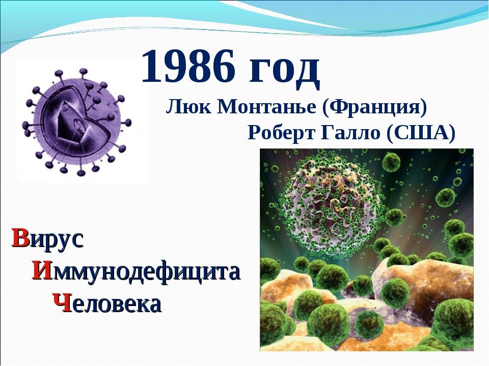Вирус Иммунодефицита Человека 1986 год Люк Монтанье (Франция) Роберт Галло (С...