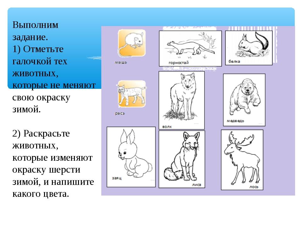 Выполним задание. 1) Отметьте галочкой тех животных, которые не меняют свою о...