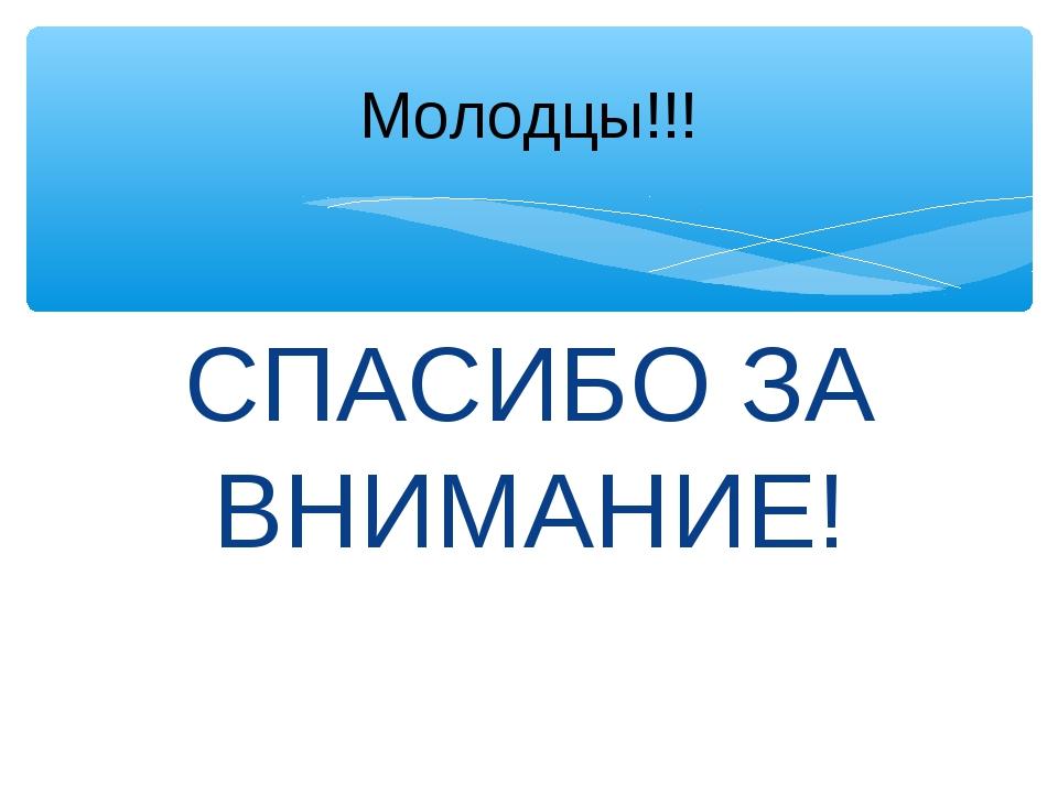 СПАСИБО ЗА ВНИМАНИЕ! Молодцы!!!