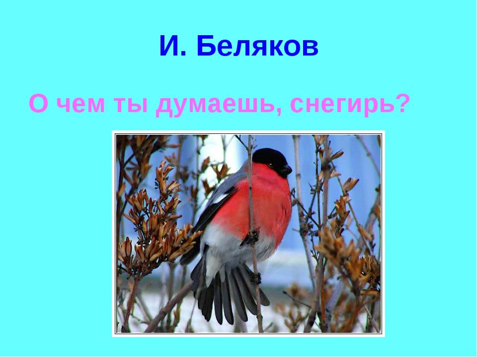 И. Беляков О чем ты думаешь, снегирь?