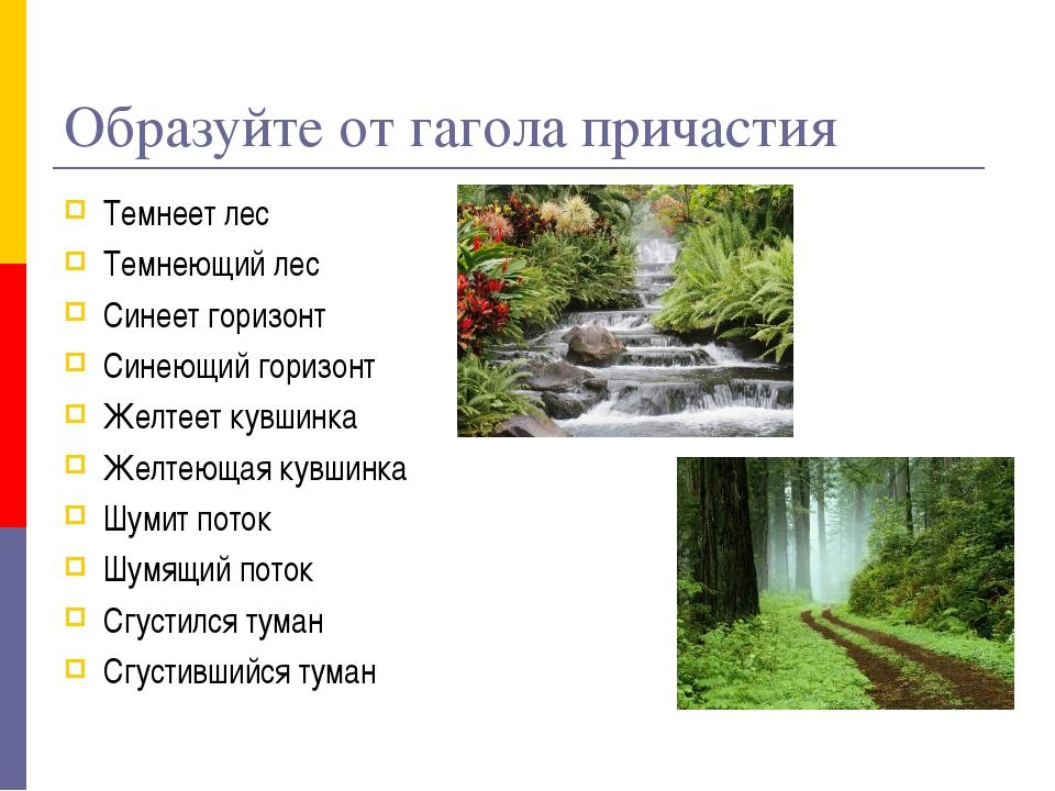 Образуйте от гагола причастия Темнеет лес Темнеющий лес Синеет горизонт Синею...