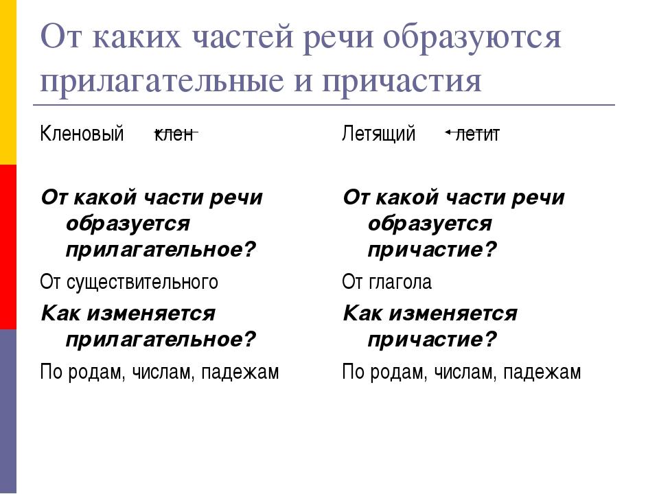 От каких частей речи образуются прилагательные и причастия Кленовый клен От к...