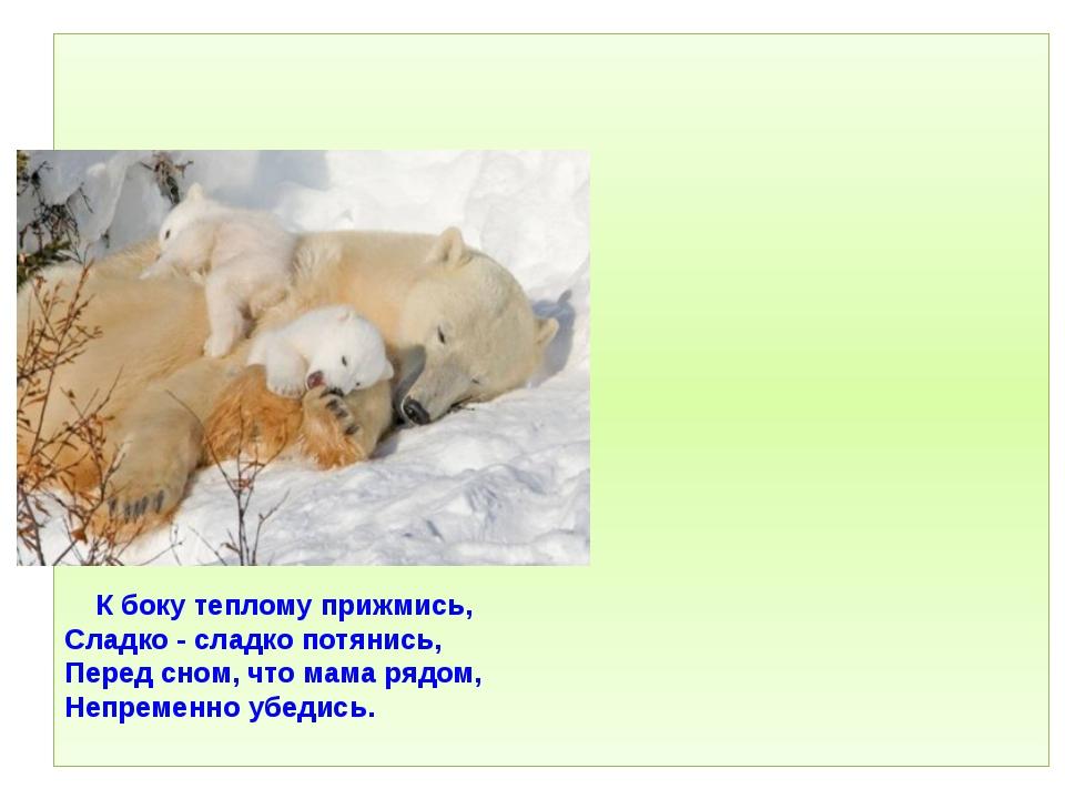 К боку теплому прижмись, Сладко - сладко потянись, Перед сном, что мама рядо...