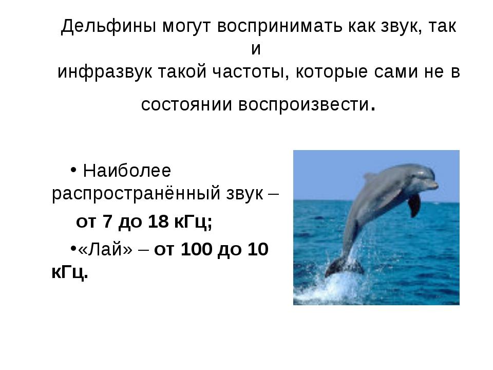 Дельфины могут воспринимать как звук, так и инфразвук такой частоты, которые...