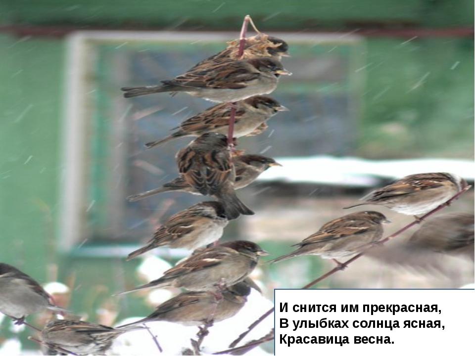 И дремлют пташки нежные Под эти вихри снежные У мёрзлого окна. И снится им п...