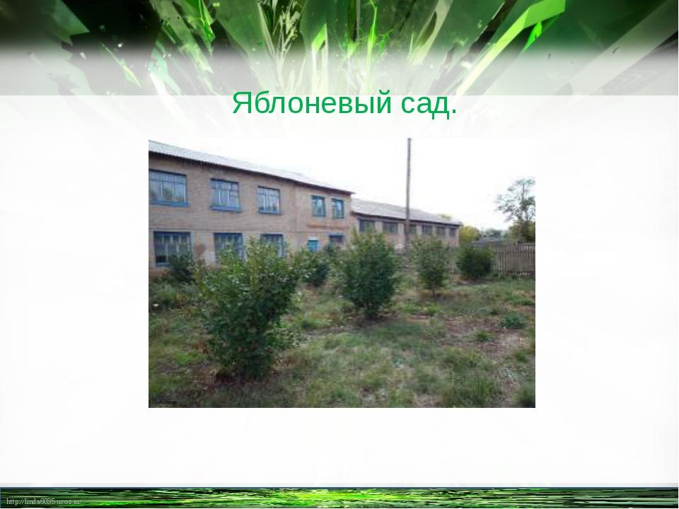 Яблоневый сад. http://linda6035.ucoz.ru/