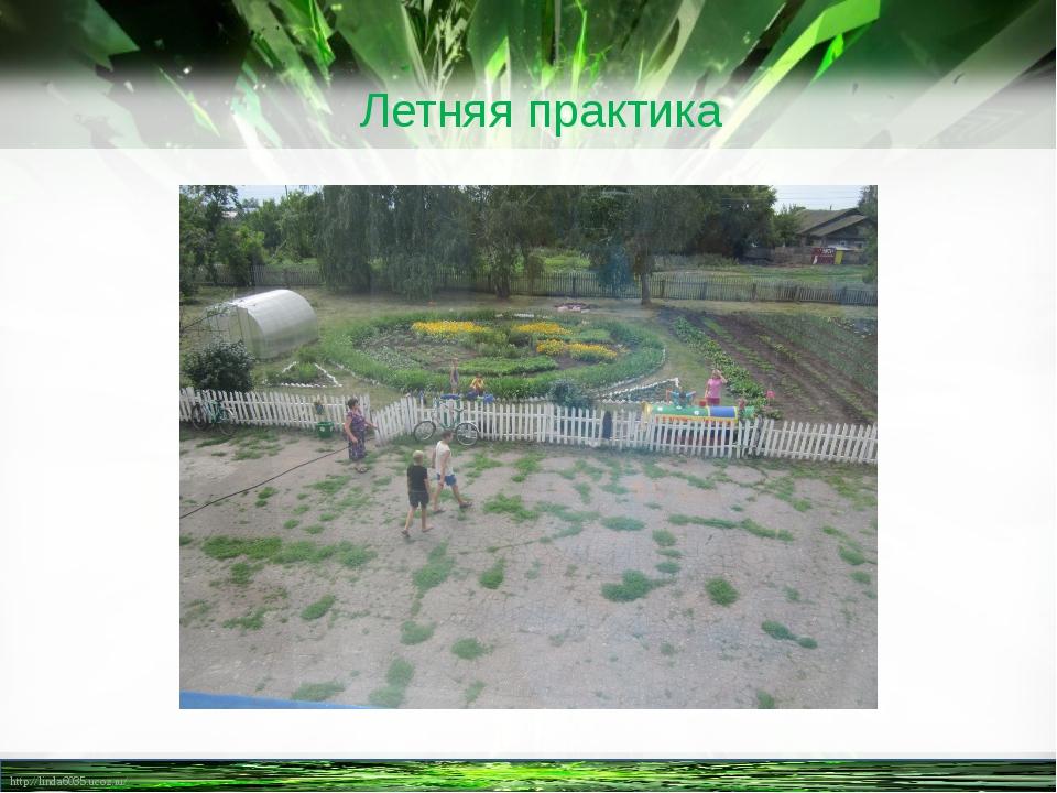 Летняя практика http://linda6035.ucoz.ru/
