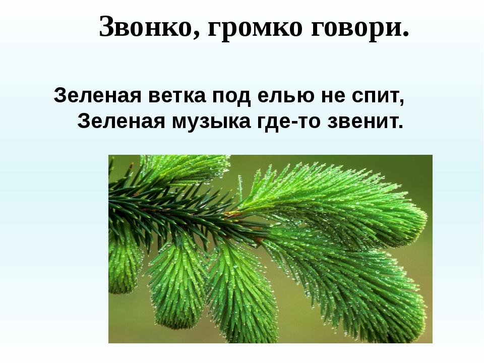 Звонко, громко говори. Зеленая ветка под елью не спит, Зеленая музыка где-т...