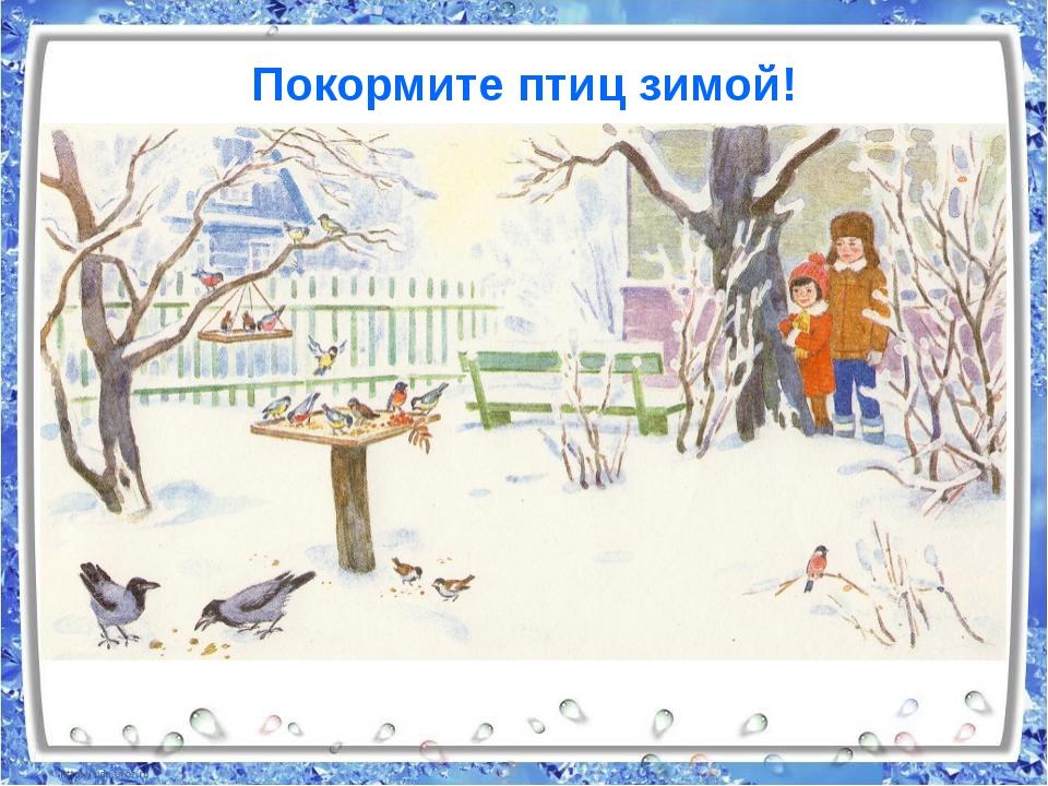 Ресурсы Единой коллекции цифровых образовательных ресурсов: Зима (N 139716)...
