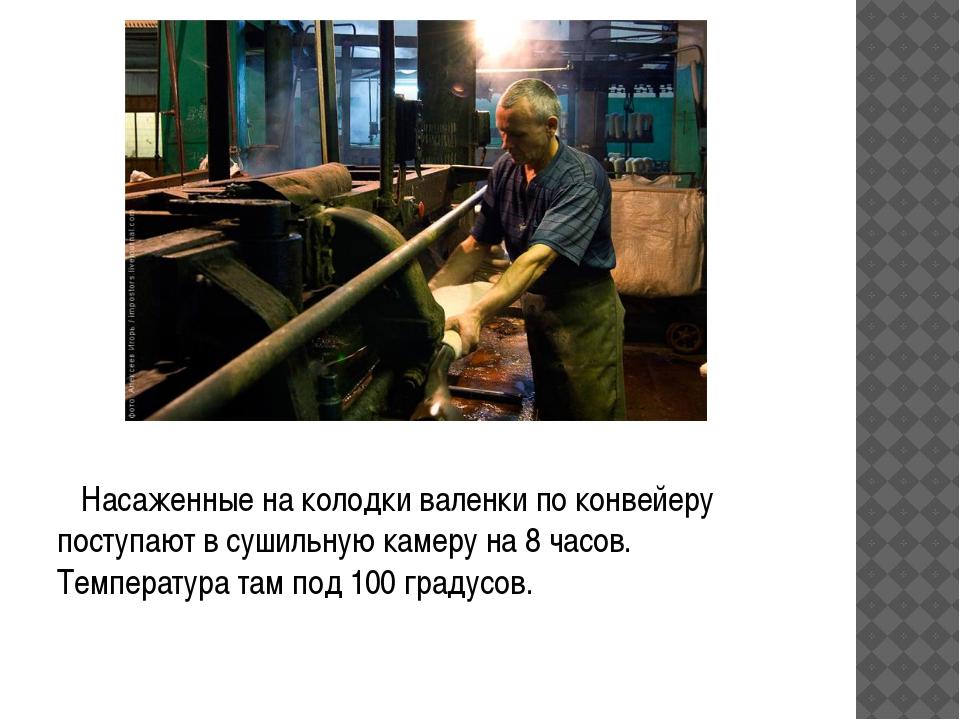 Насаженные на колодки валенки по конвейеру поступают в сушильную камеру на 8...