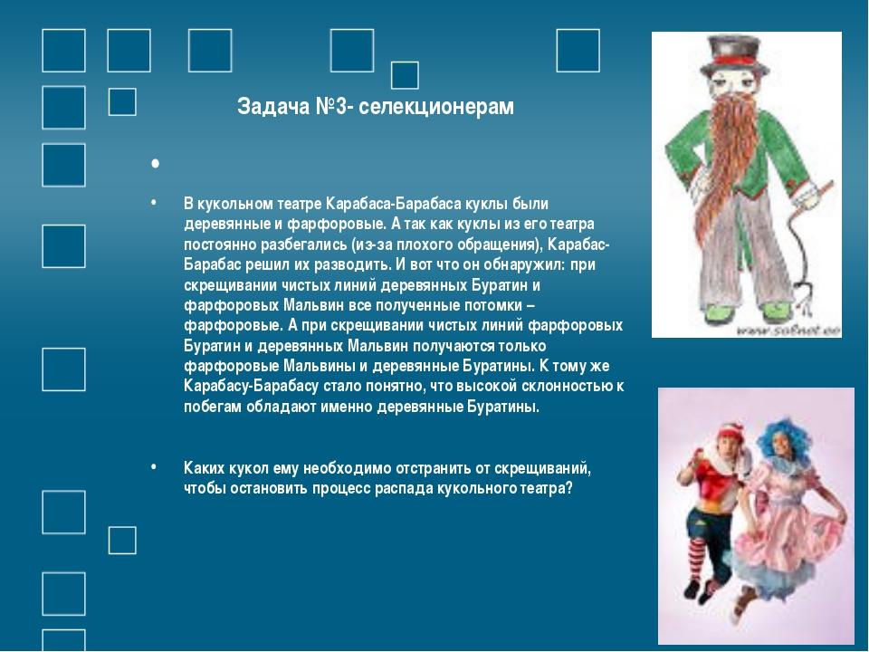 Задача №3- селекционерам  В кукольном театре Карабаса-Барабаса куклы были д...