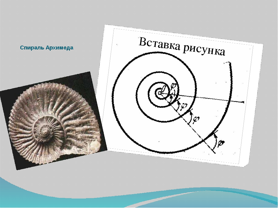 Спираль Архимеда