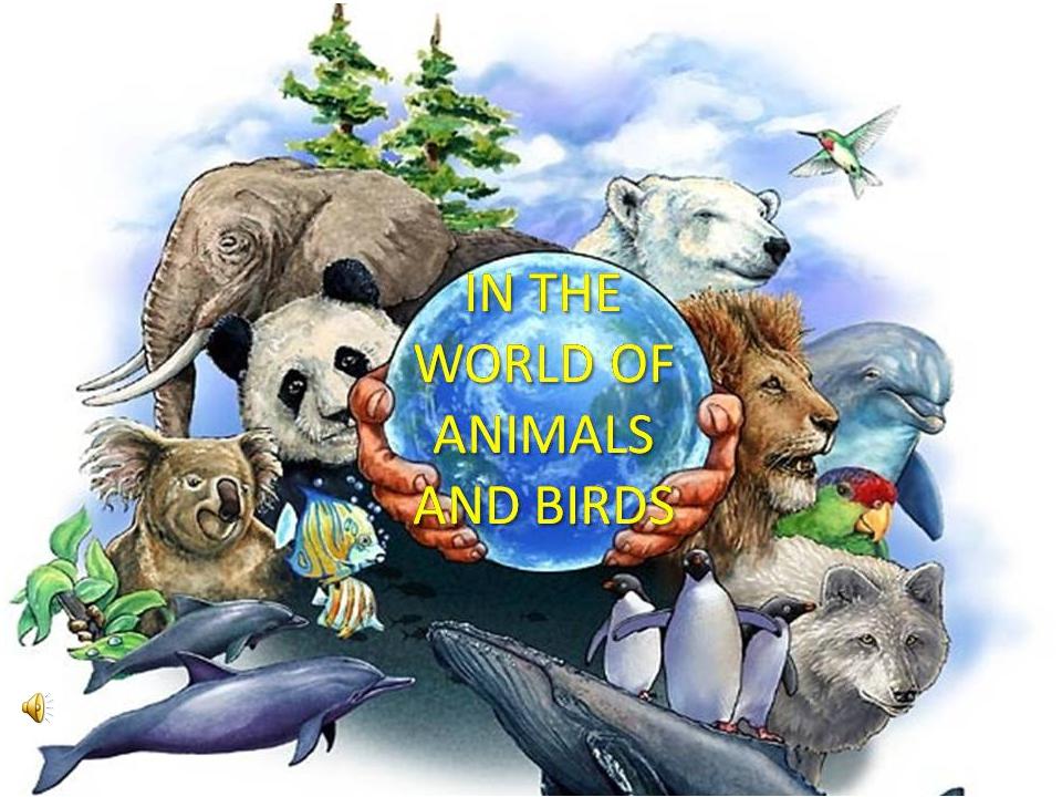 Картинки на тему защита животных