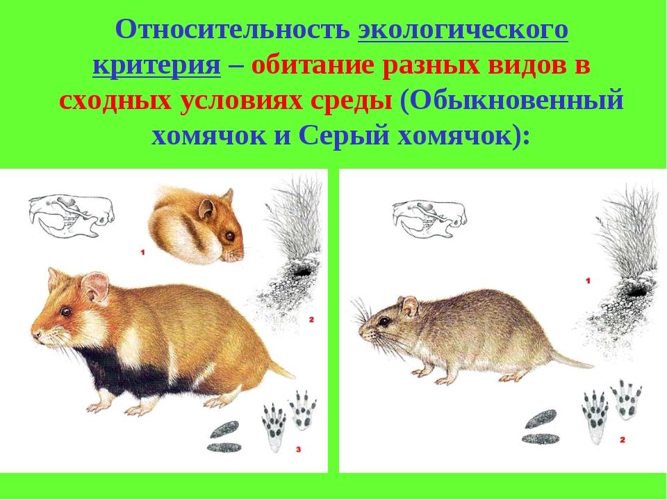 Относительность экологического критерия – обитание разных видов в сходных усл...
