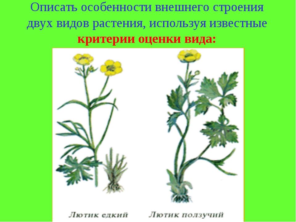 Описать особенности внешнего строения двух видов растения, используя известны...