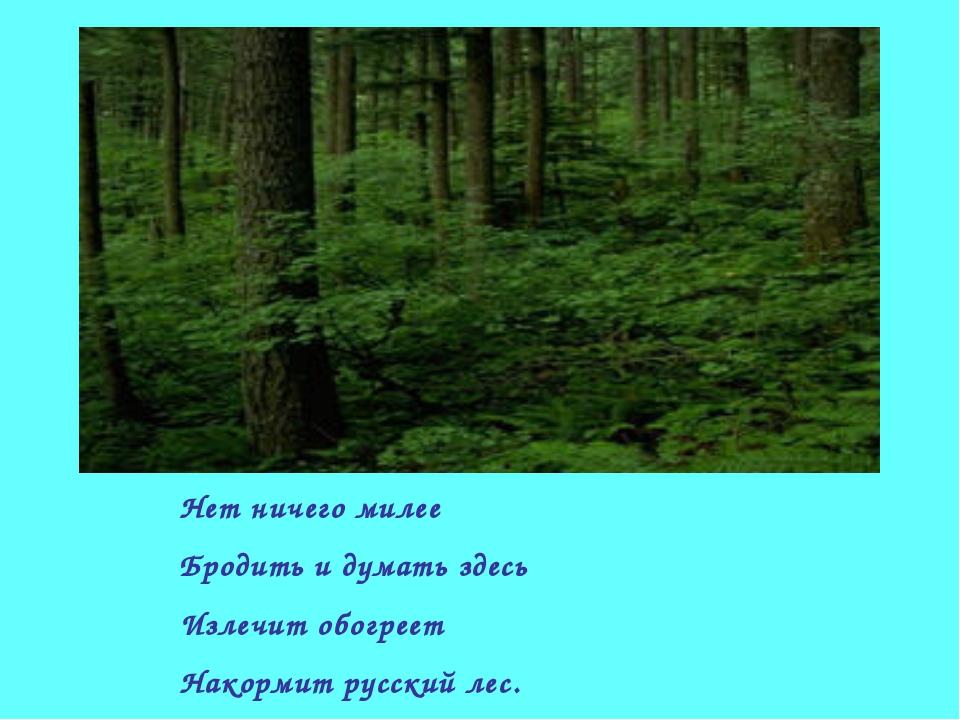 Нет ничего милее Бродить и думать здесь Излечит обогреет Накормит русский лес.