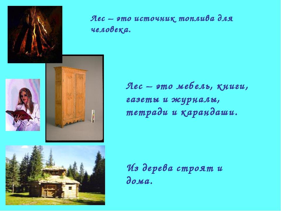 Лес – это источник топлива для человека. Лес – это мебель, книги, газеты и жу...