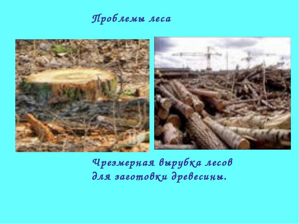 Проблемы леса Чрезмерная вырубка лесов для заготовки древесины.
