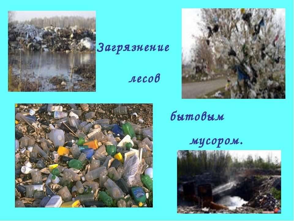 Загрязнение лесов бытовым мусором.