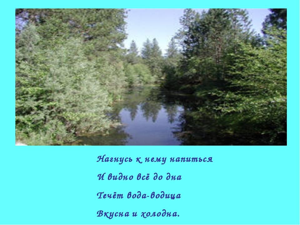 Нагнусь к нему напиться И видно всё до дна Течёт вода-водица Вкусна и холодна.