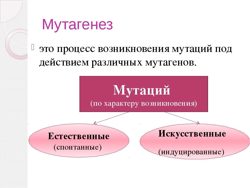 Мутагенез это процесс возникновения мутаций под действием различных мутагенов...