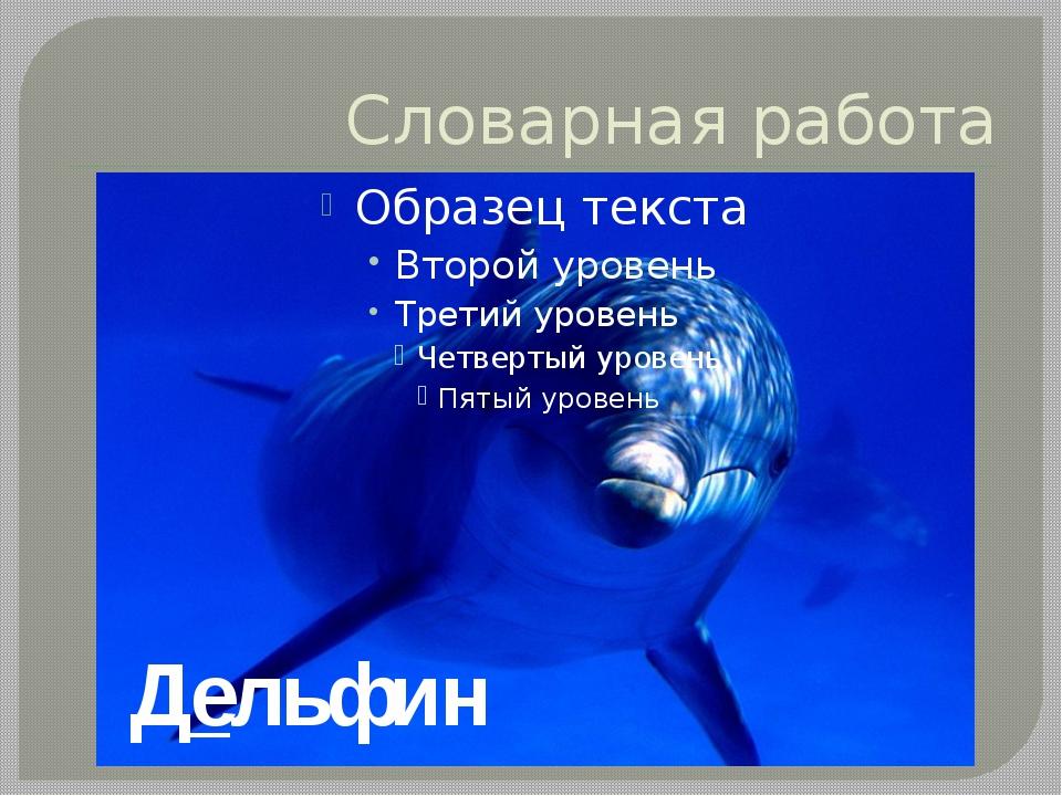 Словарная работа Дельфин