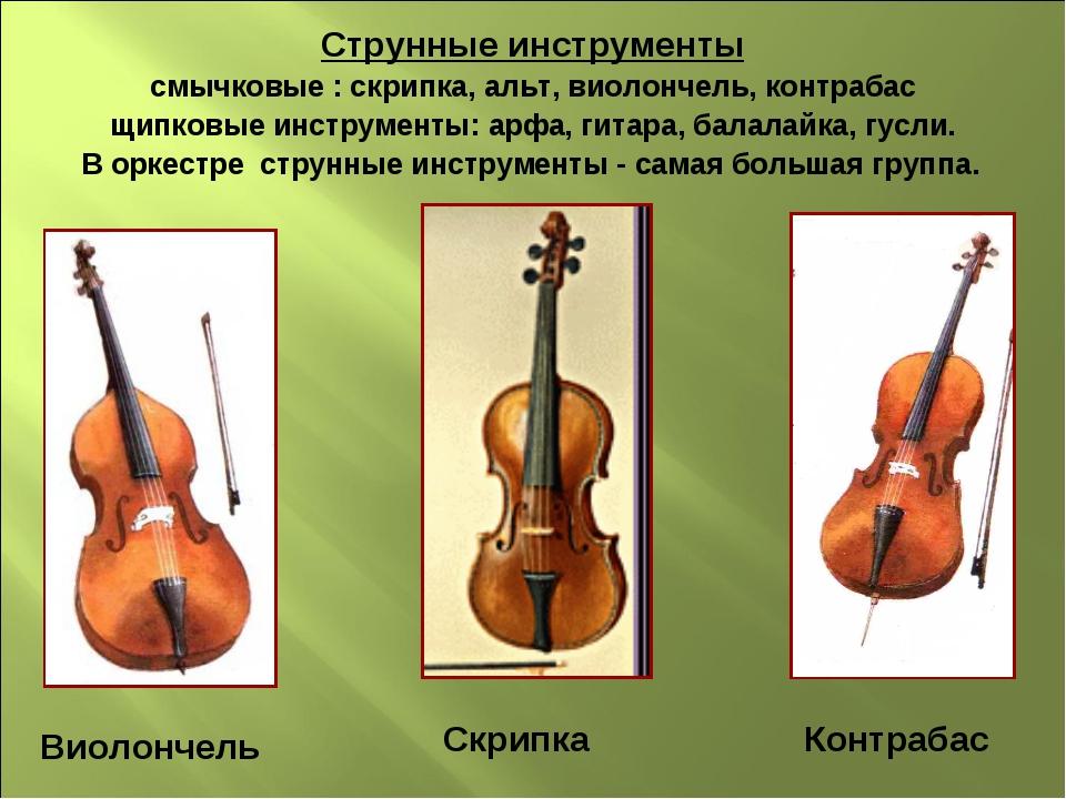 Струнные инструменты смычковые : скрипка, альт, виолончель, контрабас щипковы...