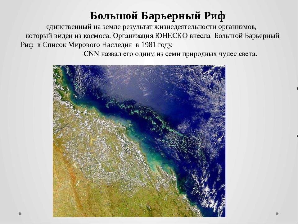 Большой Барьерный Риф единственный на земле результат жизнедеятельности орга...