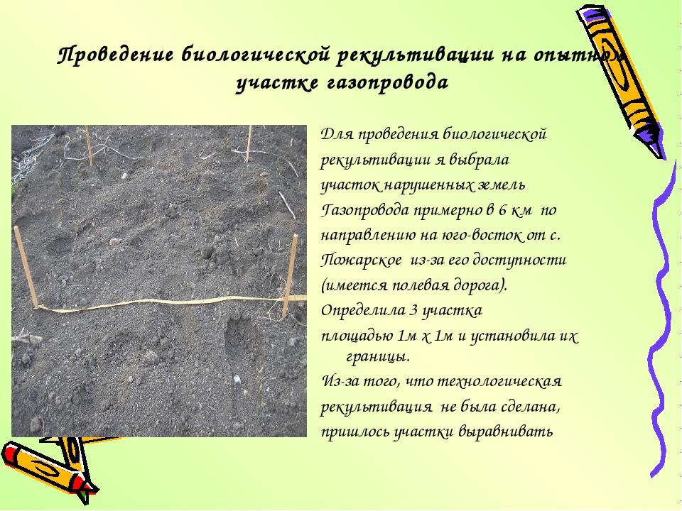 Проведение биологической рекультивации на опытном участке газопровода Для про...