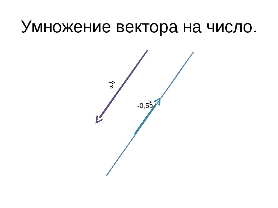 Умножение вектора на число. -0,5в в