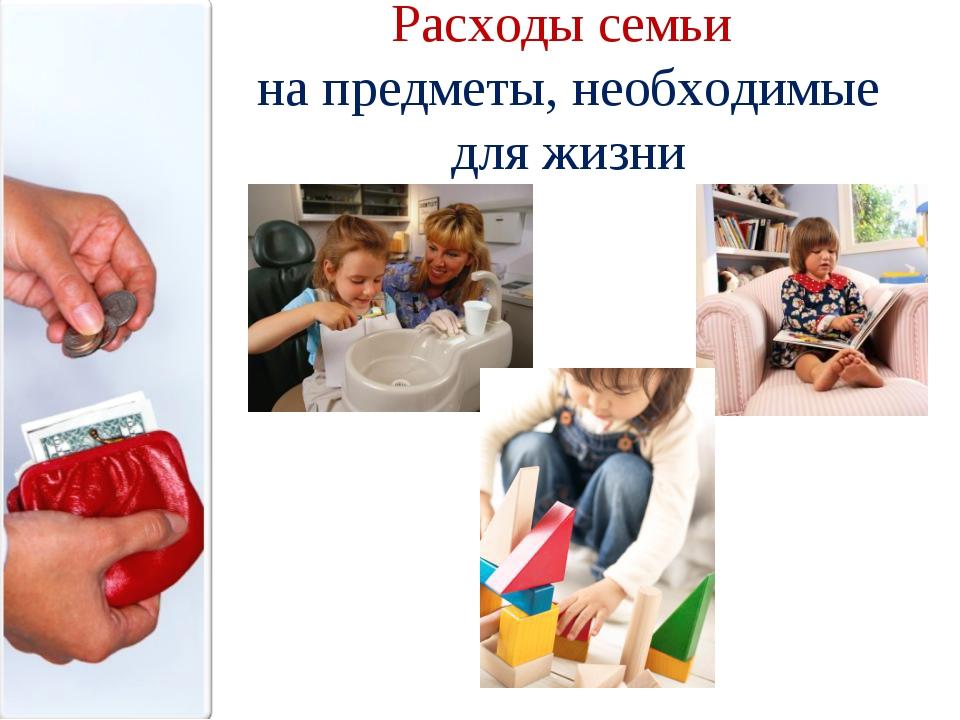 Расходы семьи на предметы, необходимые для жизни