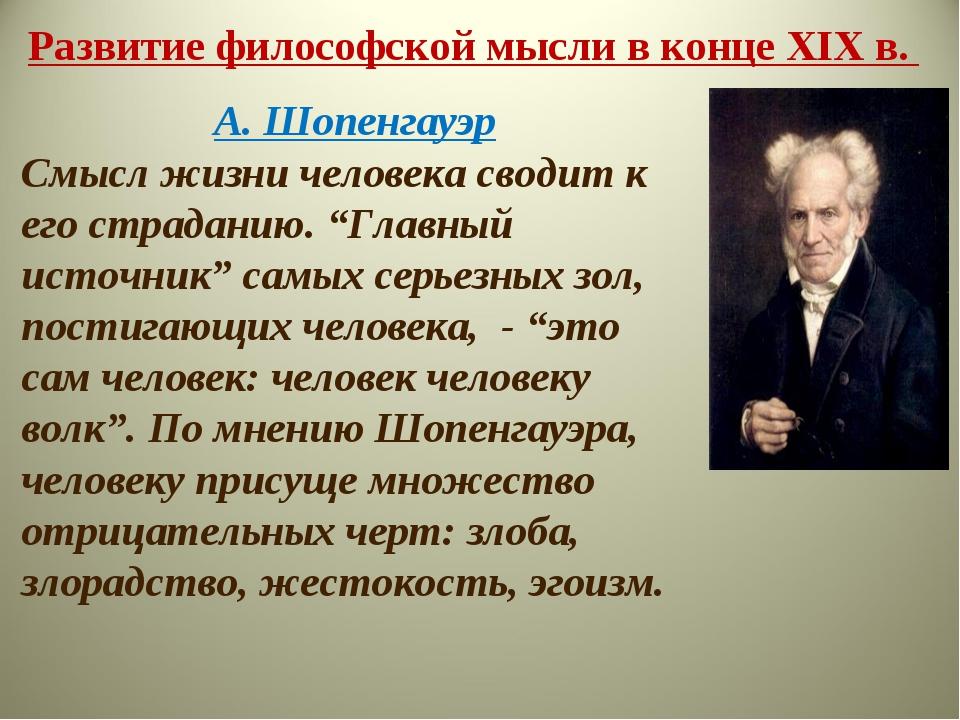 Развитие философской мысли в конце XIX в. А. Шопенгауэр Смысл жизни человека...