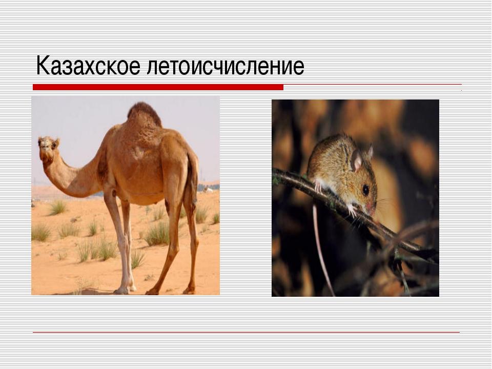 Казахское летоисчисление