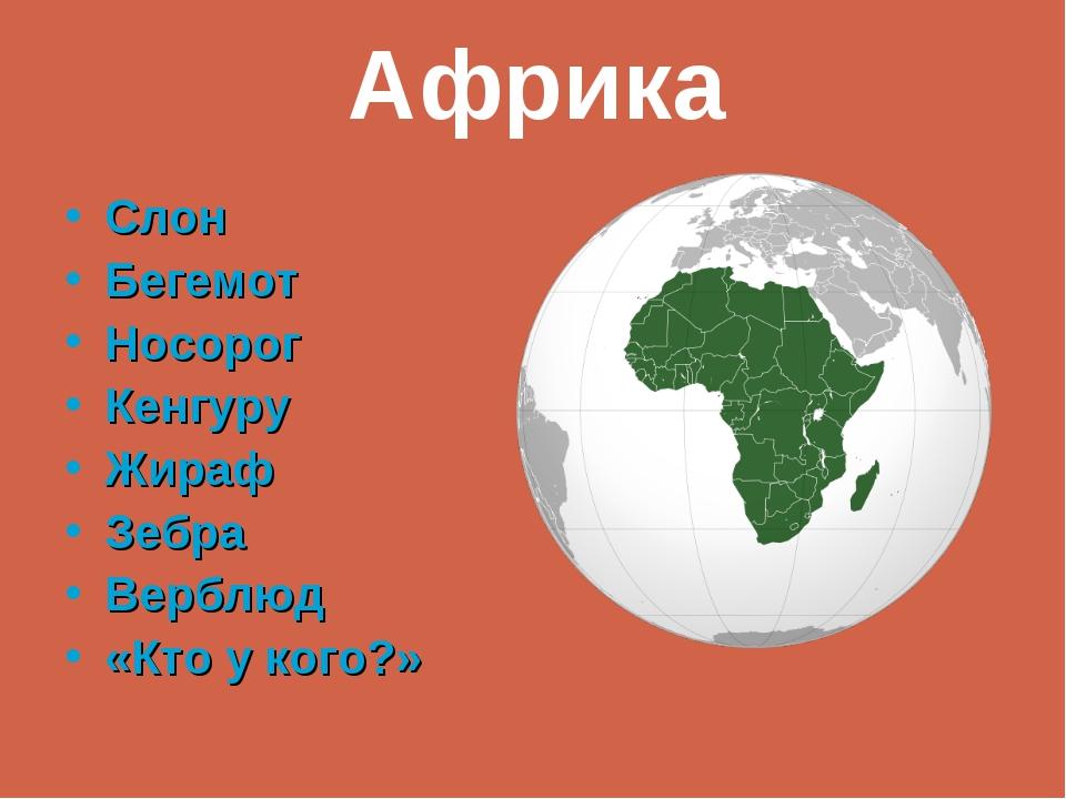 Слон Бегемот Носорог Кенгуру Жираф Зебра Верблюд «Кто у кого?» Африка