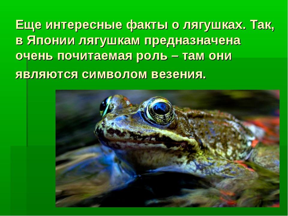 Еще интересные факты о лягушках. Так, в Японии лягушкам предназначена очень п...