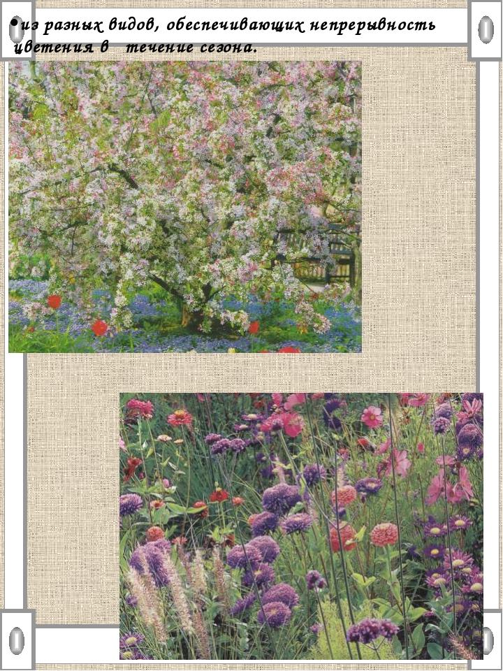 •из разных видов, обеспечивающих непрерывность цветения в течение сезона.